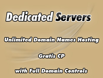 Inexpensive dedicated servers hosting package
